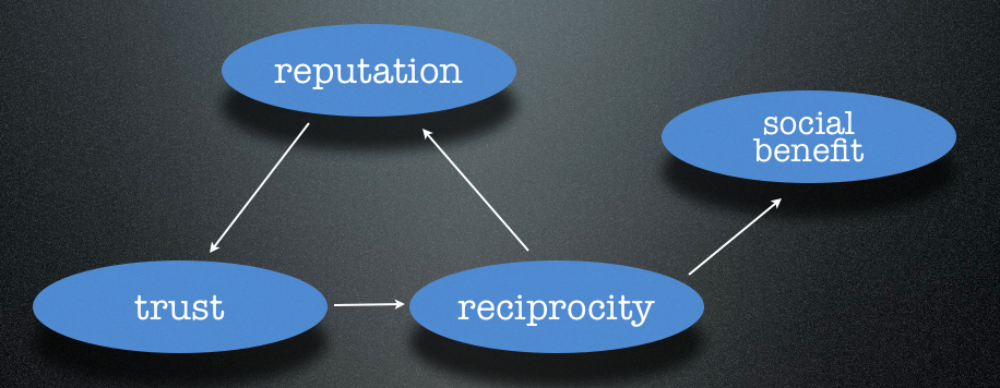 The relationship between reputation, trust, reciprocity, and social benefit